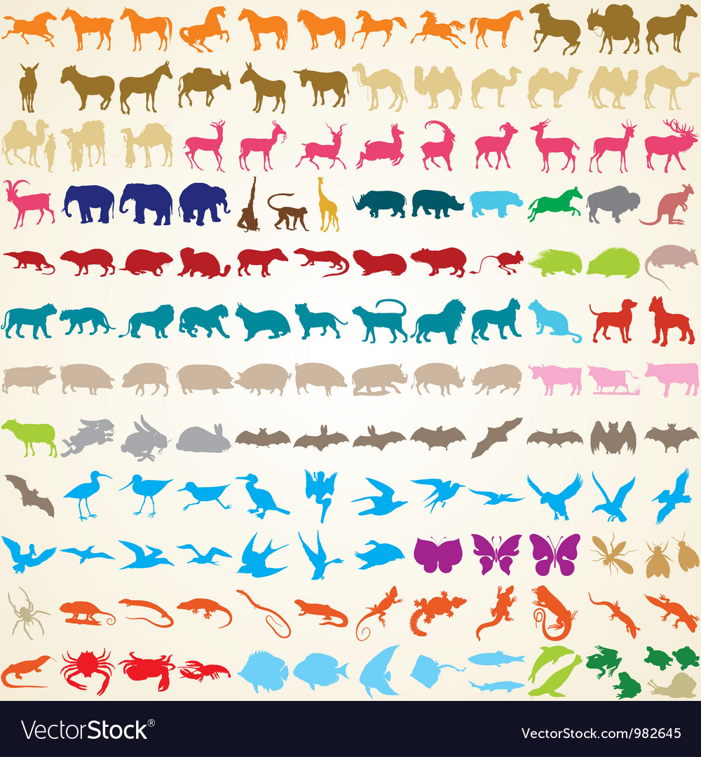 Animals silhouettes collection vector | Price: 1 Credit (USD $1)
