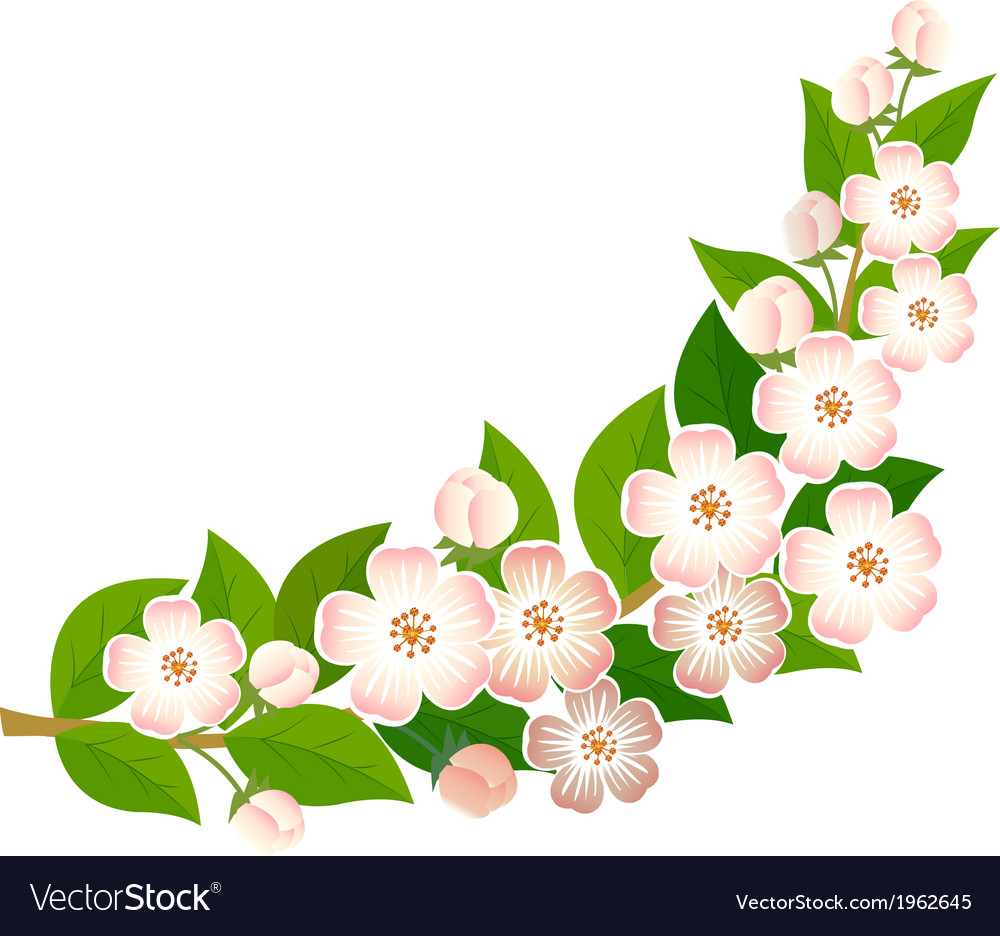 Blossoming branch vector | Price: 1 Credit (USD $1)
