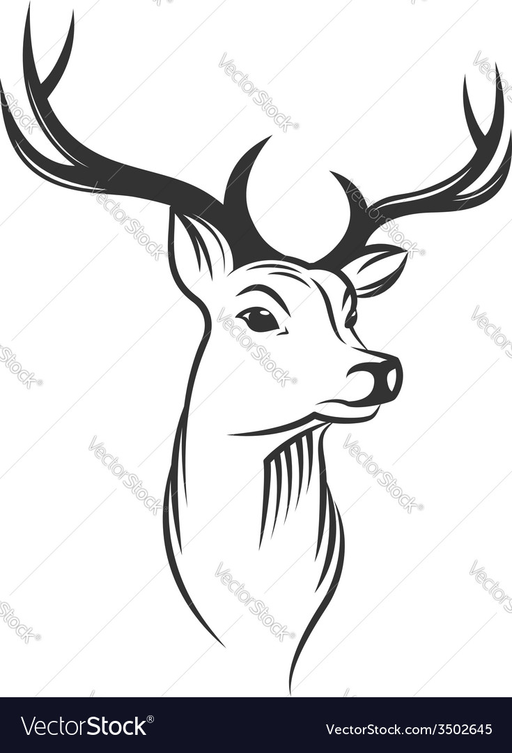 Deer head on white background vector | Price: 1 Credit (USD $1)