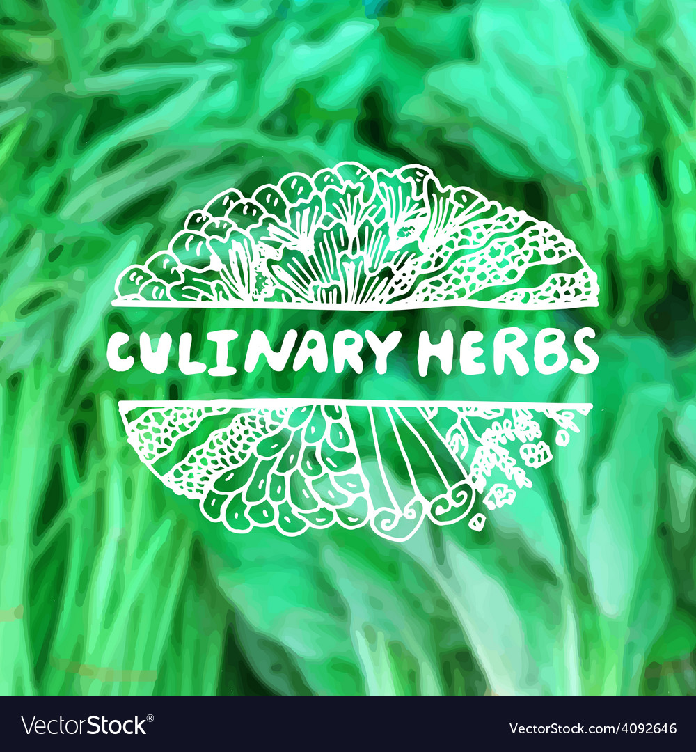 Zentangle element on blurred background culinary vector | Price: 1 Credit (USD $1)
