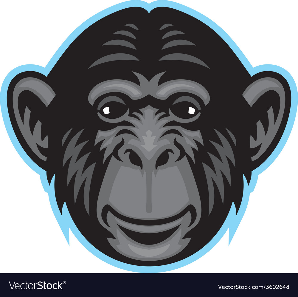 Chimp head vector | Price: 3 Credit (USD $3)