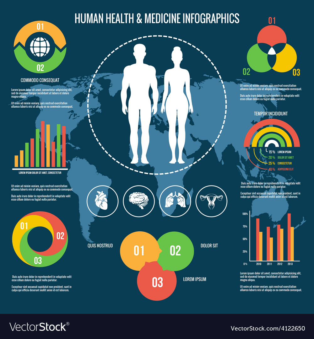 Human health and medicine infographics vector | Price: 1 Credit (USD $1)