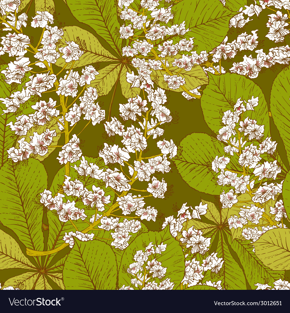 Blossom chestnut seamless spring background vector | Price: 1 Credit (USD $1)