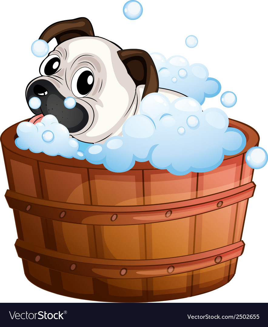 A cute bulldog inside the bathtub vector | Price: 1 Credit (USD $1)