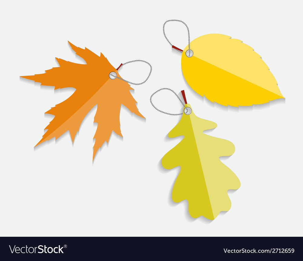 Autumn leaves labels vector | Price: 1 Credit (USD $1)