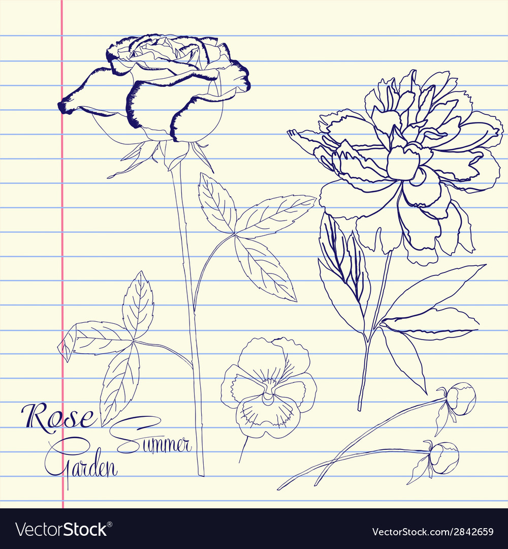 Notebook set with peony and rose vector   Price: 1 Credit (USD $1)
