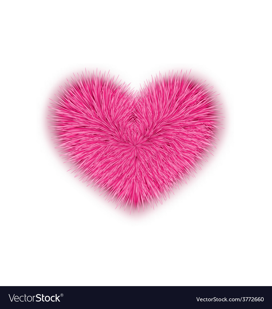 Fur pink heart for valentines day isolated on vector | Price: 1 Credit (USD $1)
