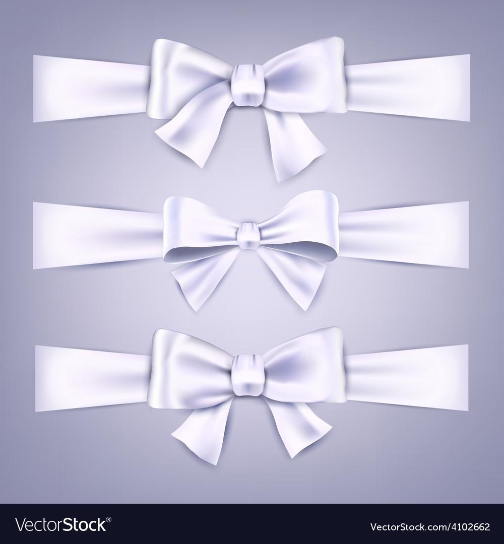 Satin white ribbons gift bows vector | Price: 1 Credit (USD $1)