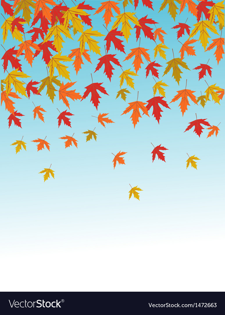 Fall leaves vector | Price: 1 Credit (USD $1)