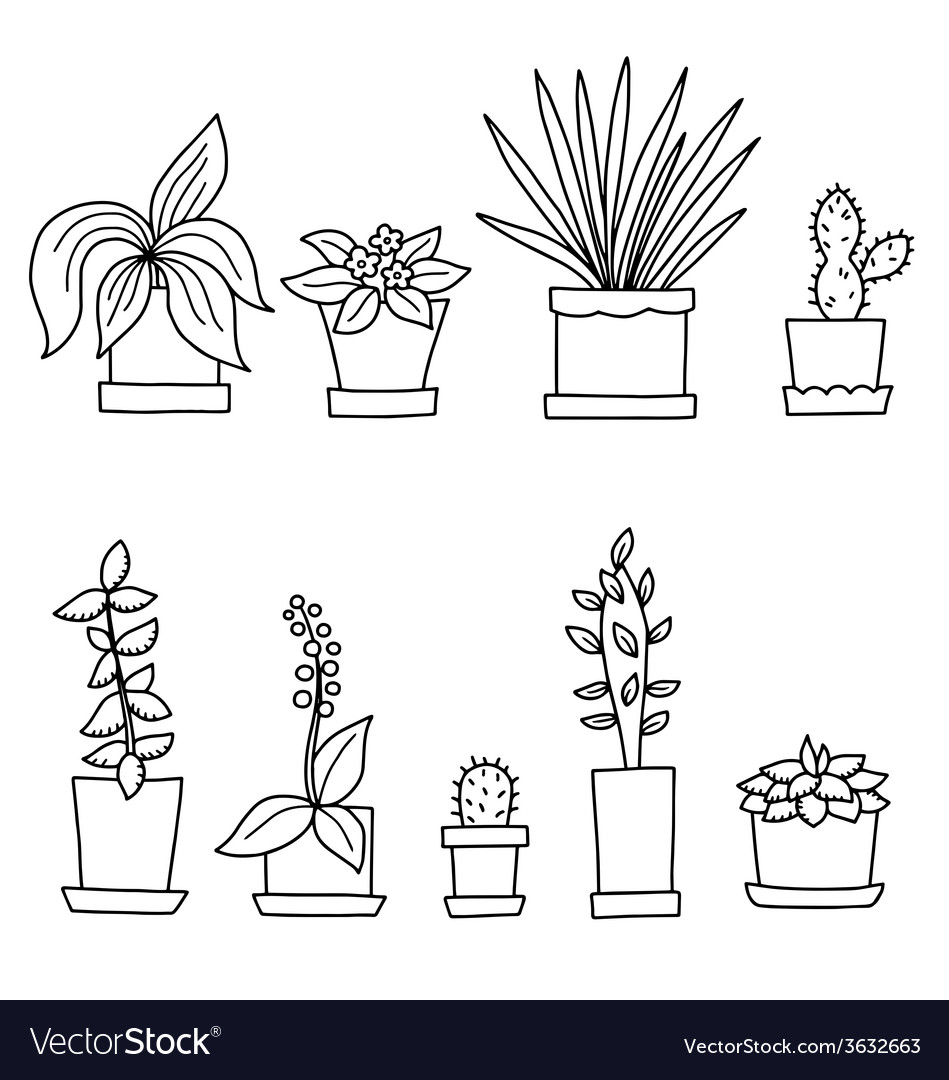 Flowers in pots vector | Price: 1 Credit (USD $1)
