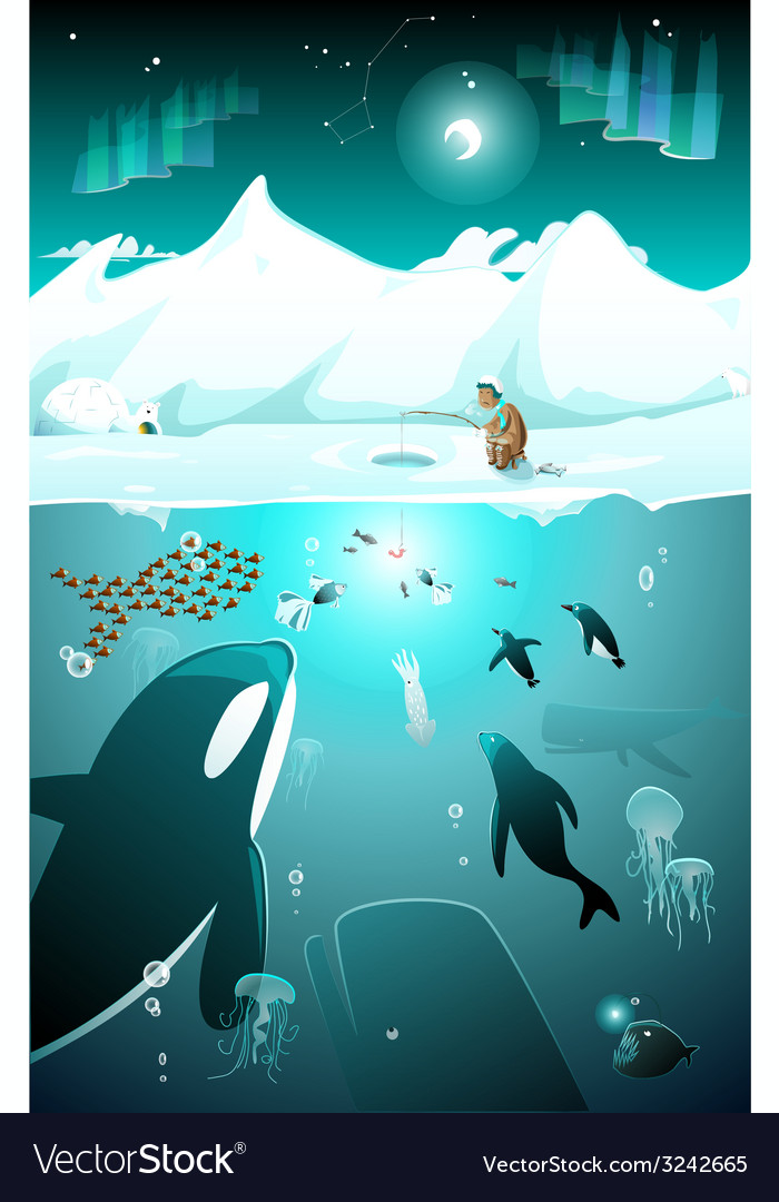 Underwater arctic life in a cold arctic night vector | Price: 3 Credit (USD $3)