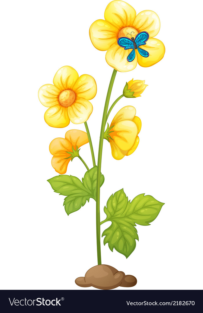 A yellow flower and a blue butterfly vector | Price: 1 Credit (USD $1)