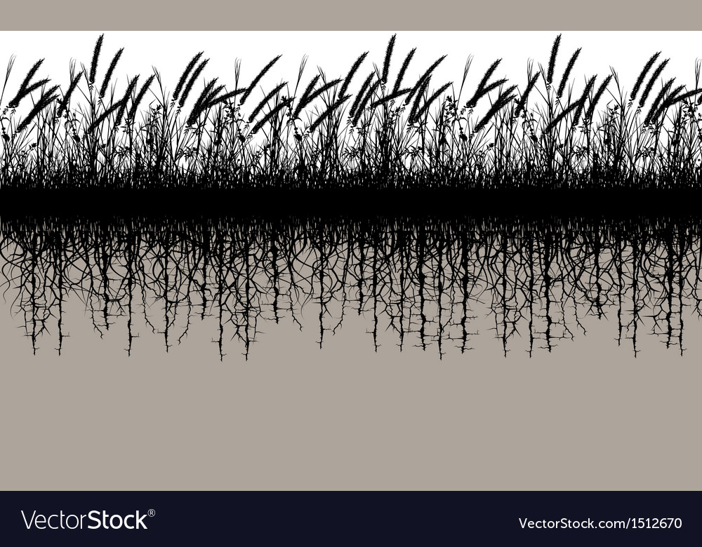 Grassroots vector | Price: 1 Credit (USD $1)