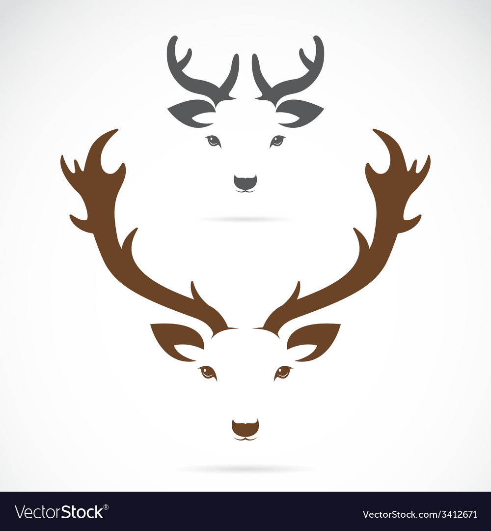 Image of an deer head vector | Price: 1 Credit (USD $1)
