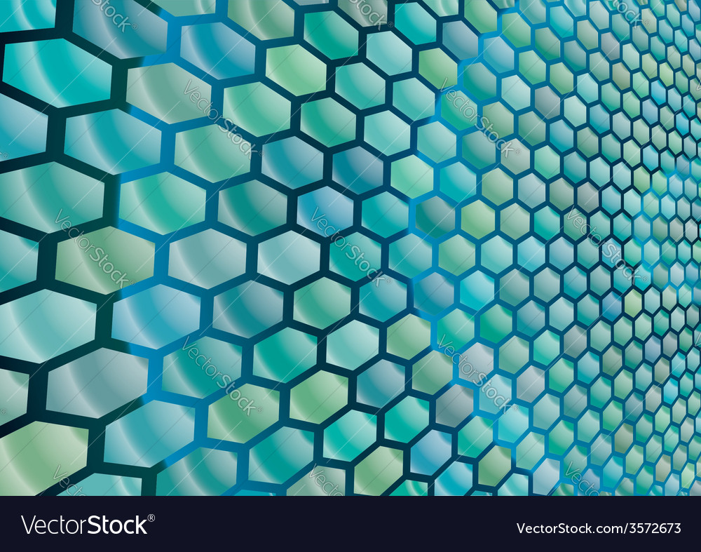 Hexagonal cells background vector   Price: 1 Credit (USD $1)