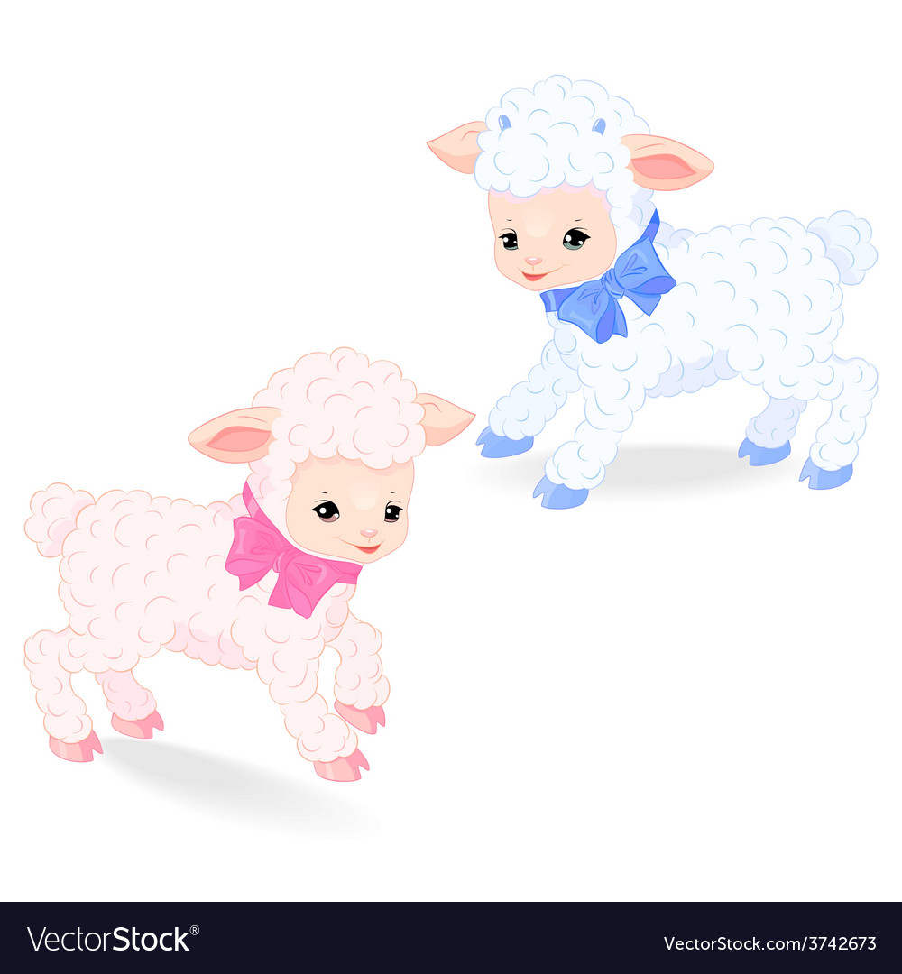 Little lambs vector | Price: 1 Credit (USD $1)