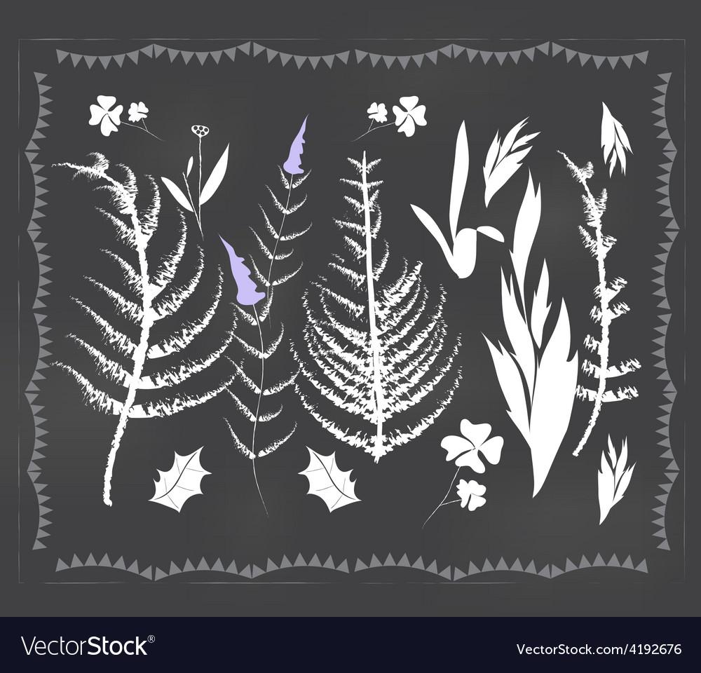 Botanical elements vector   Price: 1 Credit (USD $1)