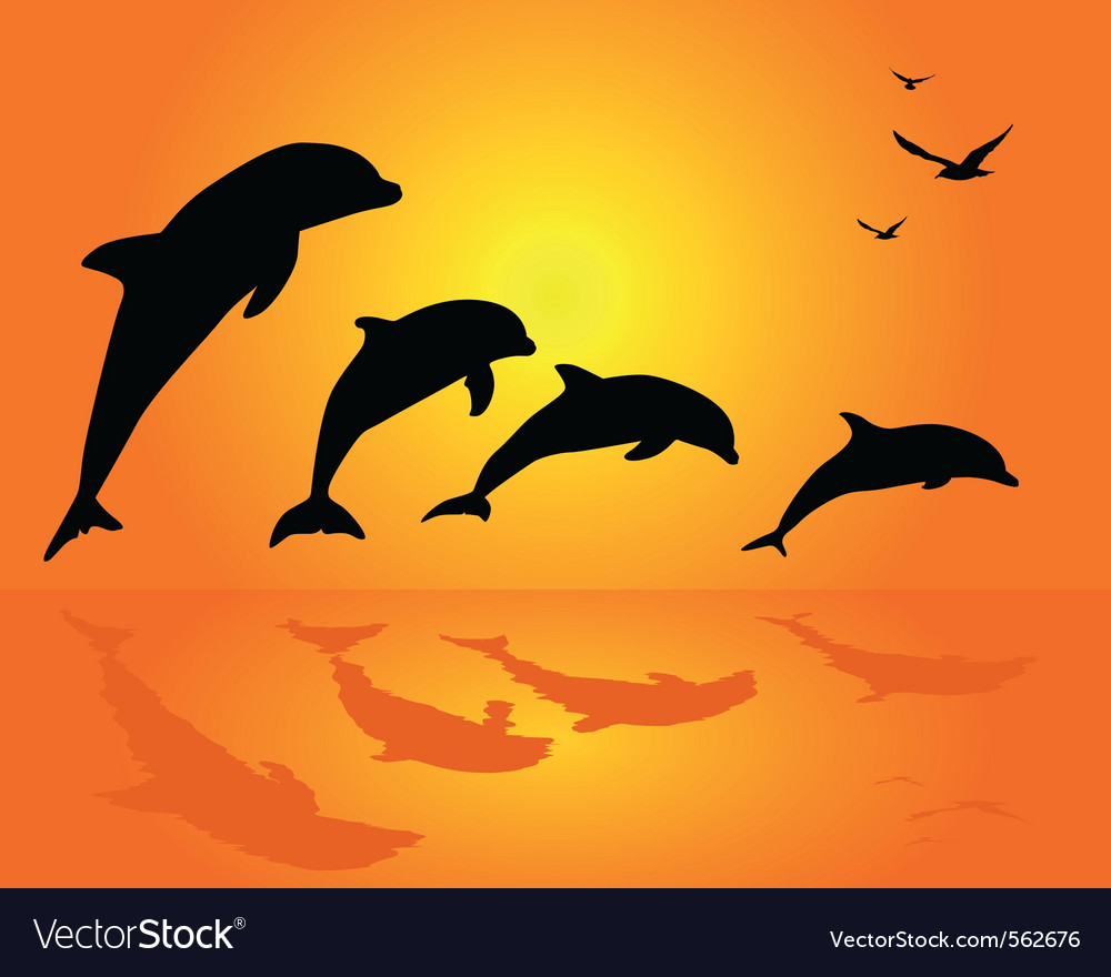 Dolphin silhouettes vector | Price: 1 Credit (USD $1)
