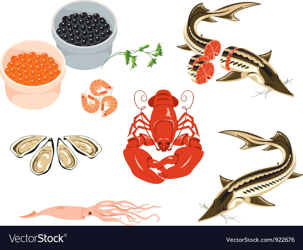 Sea food vector | Price: 1 Credit (USD $1)