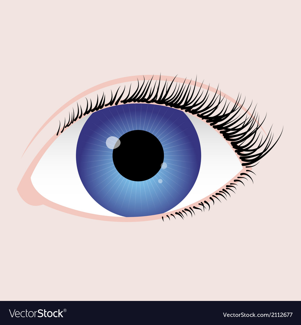 Blue eye vector | Price: 1 Credit (USD $1)