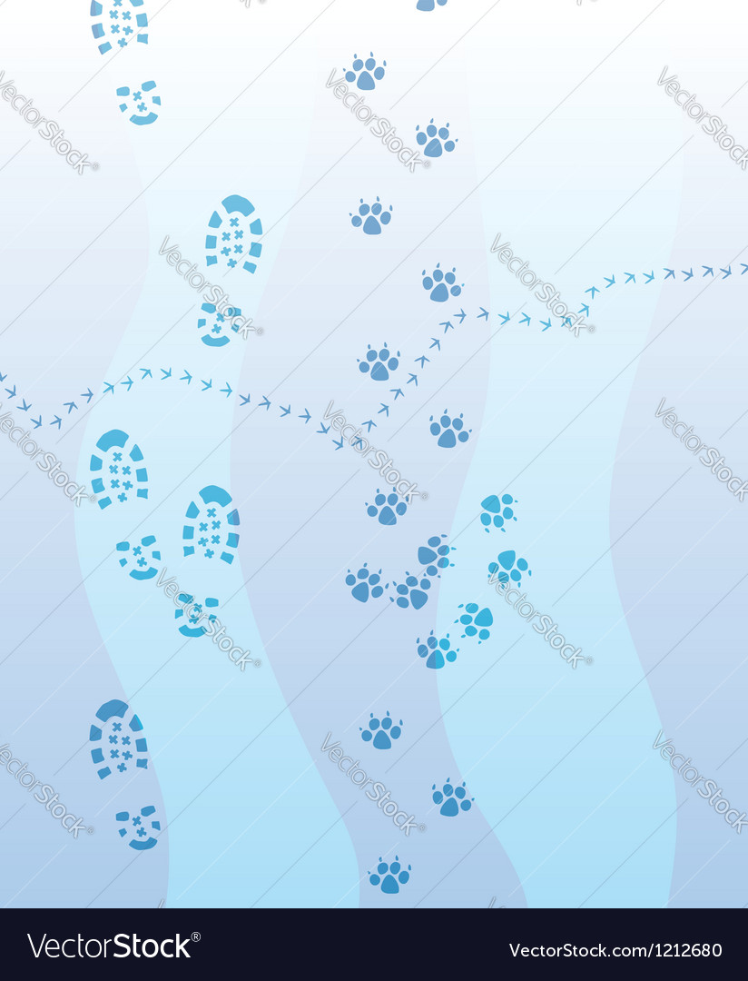 Foot print vector | Price: 1 Credit (USD $1)