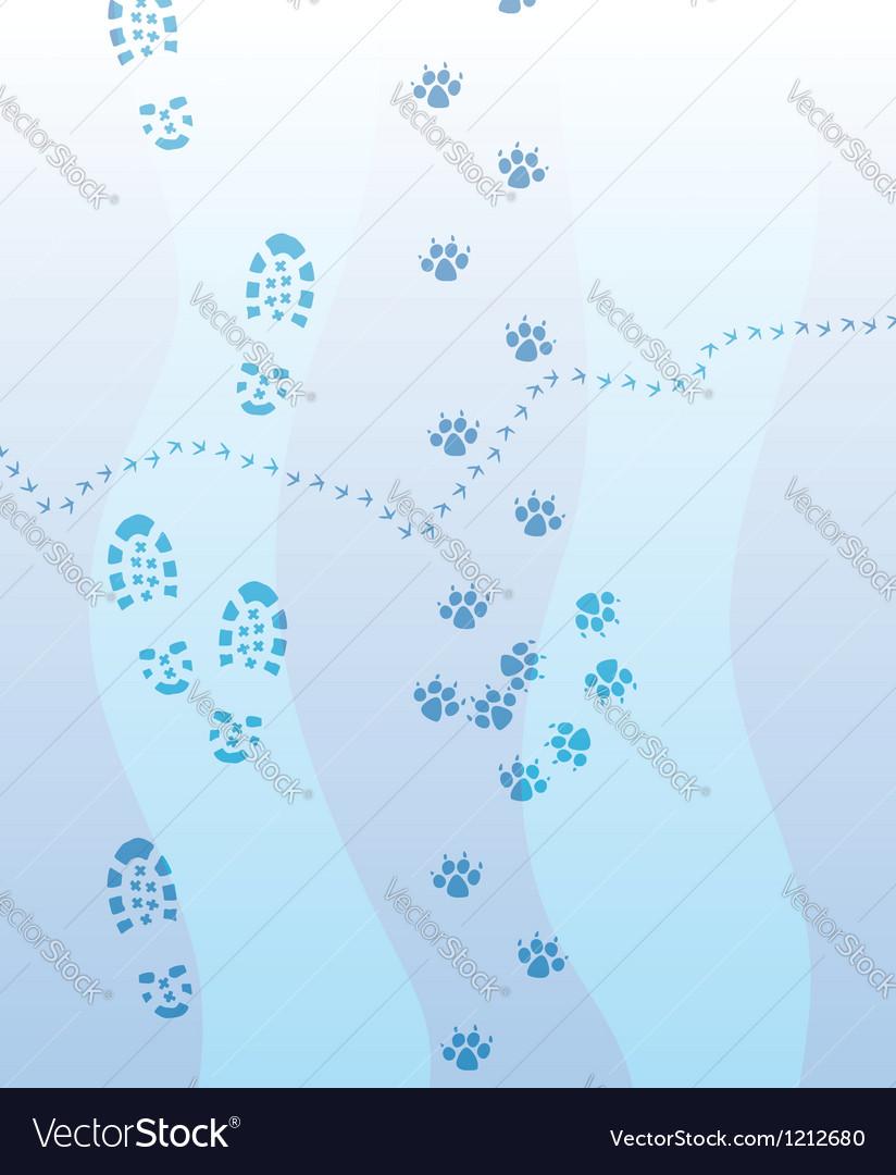 Foot print vector | Price: 1 Credit (USD $1)