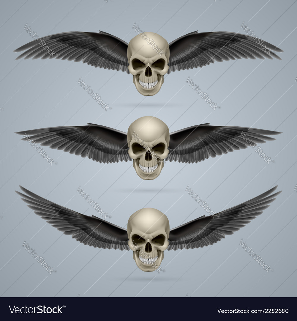 Three evil skulls with wings vector | Price: 1 Credit (USD $1)
