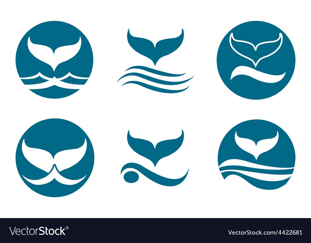 Whale tail logo vector | Price: 1 Credit (USD $1)