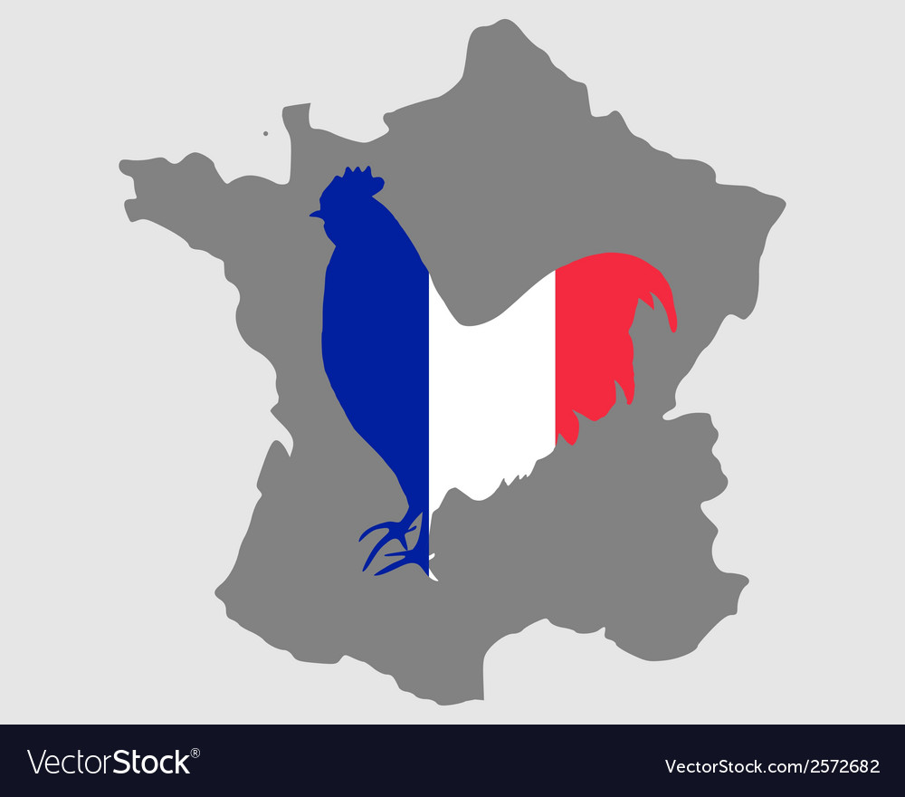 French cock vector | Price: 1 Credit (USD $1)