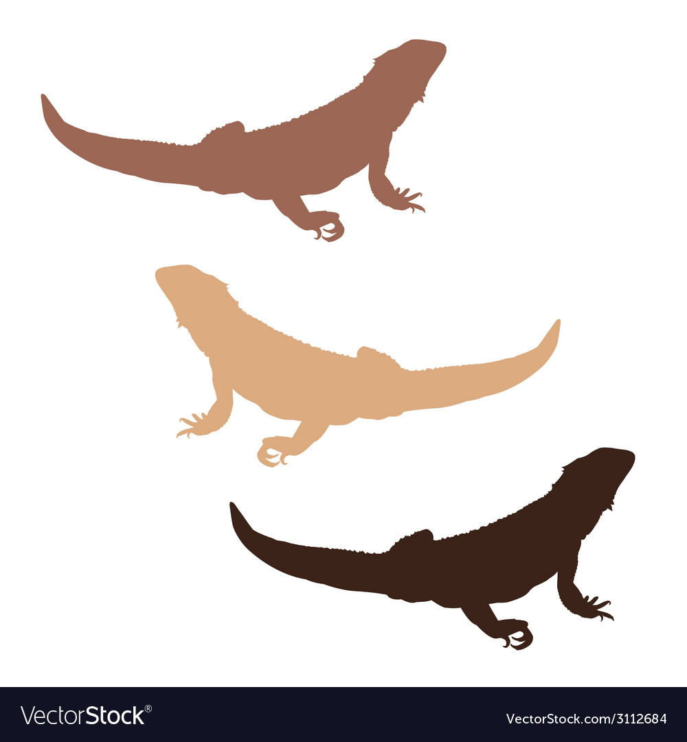 Bearded dragon silhouettes vector | Price: 1 Credit (USD $1)