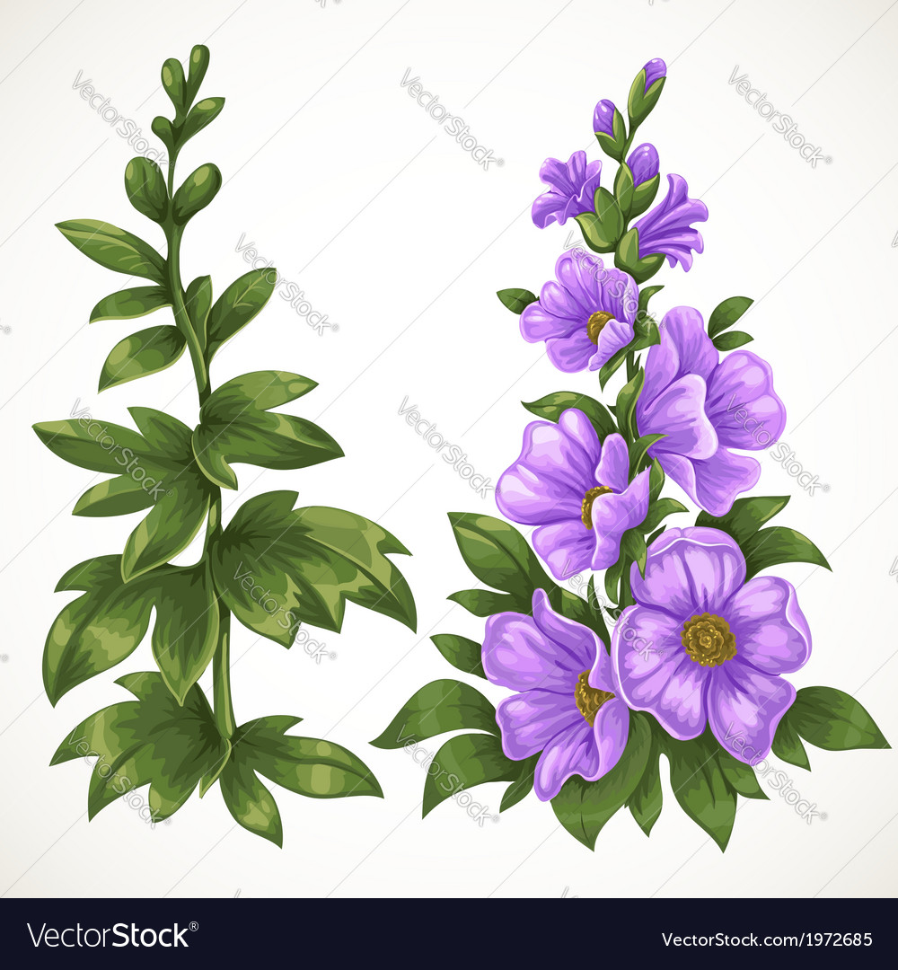 Green grass and purple flower vector | Price: 1 Credit (USD $1)
