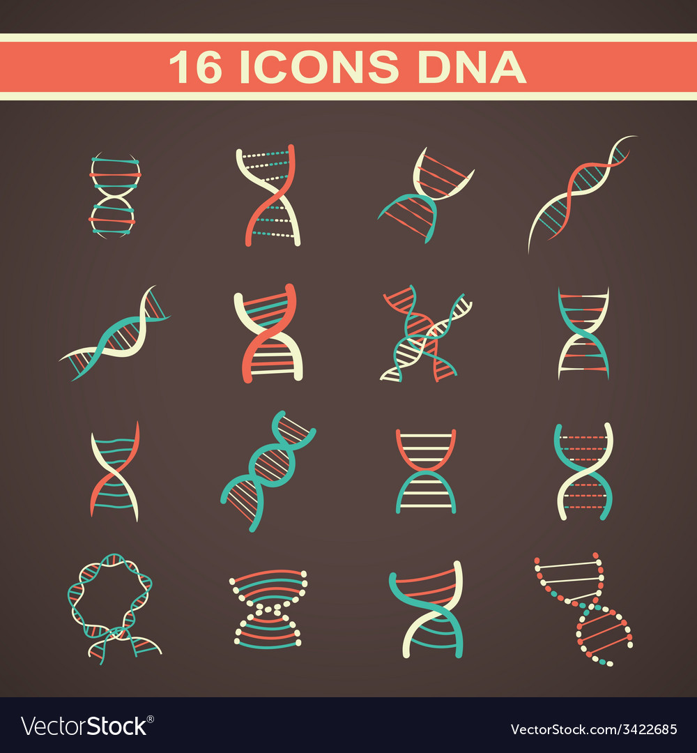 Icon dna vector | Price: 1 Credit (USD $1)