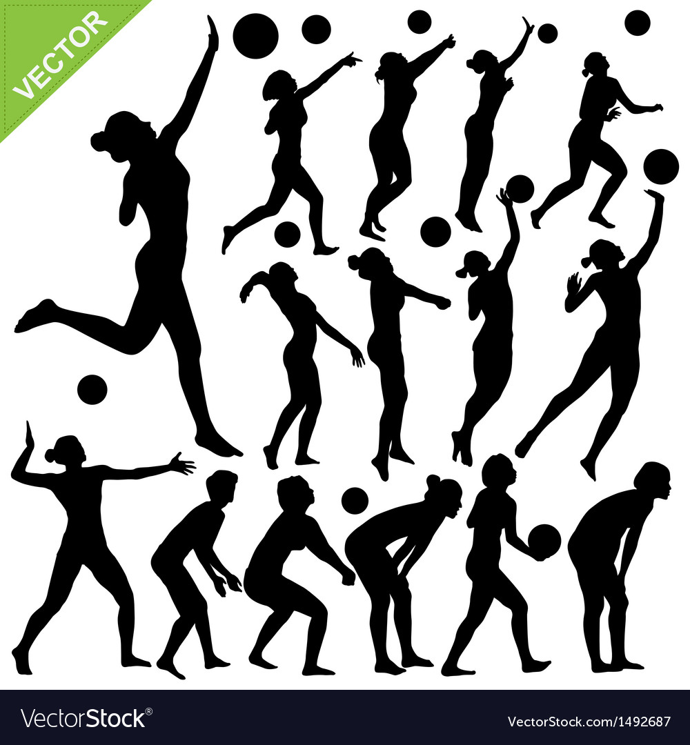 Women beach volleyball silhouettes vector | Price: 1 Credit (USD $1)