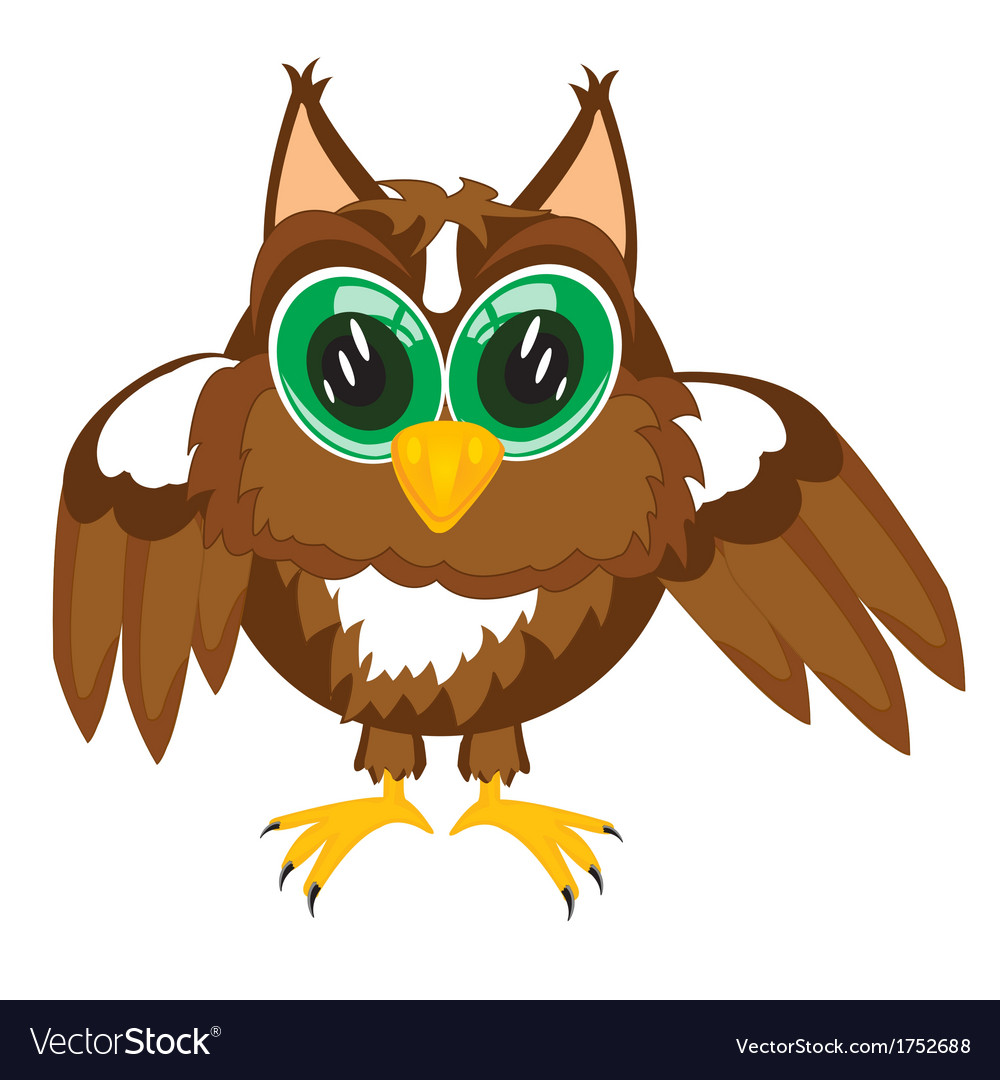 Cartoon of the owl on white vector | Price: 1 Credit (USD $1)