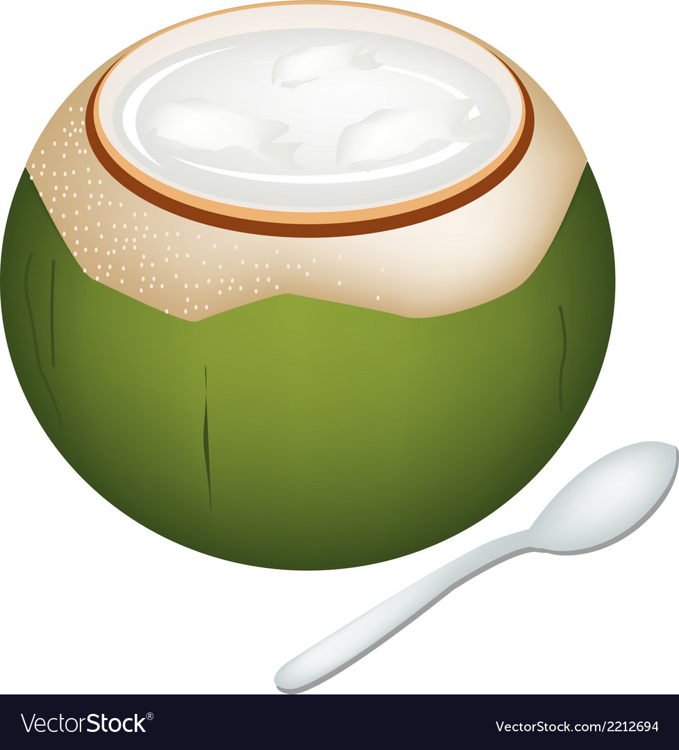 Coconuts jelly in coconut shell vector | Price: 1 Credit (USD $1)