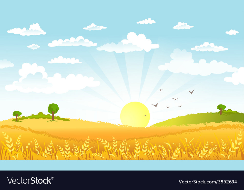 Countryside panorama in the morning vector | Price: 3 Credit (USD $3)