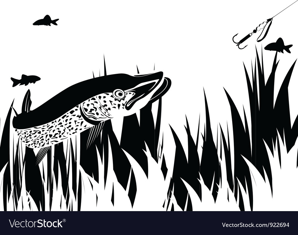 Pike and lure vector | Price: 1 Credit (USD $1)