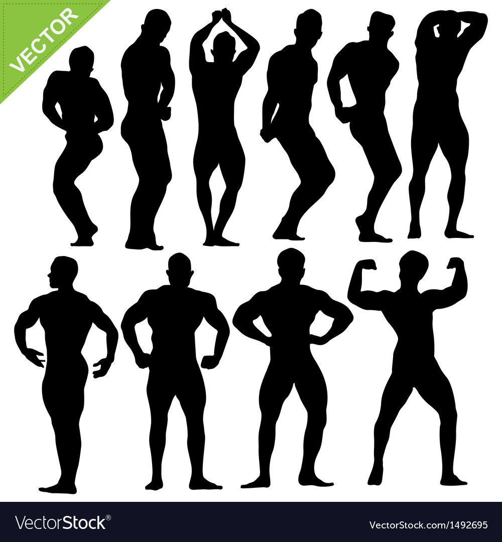 Bodybuilding silhouettes vector | Price: 1 Credit (USD $1)