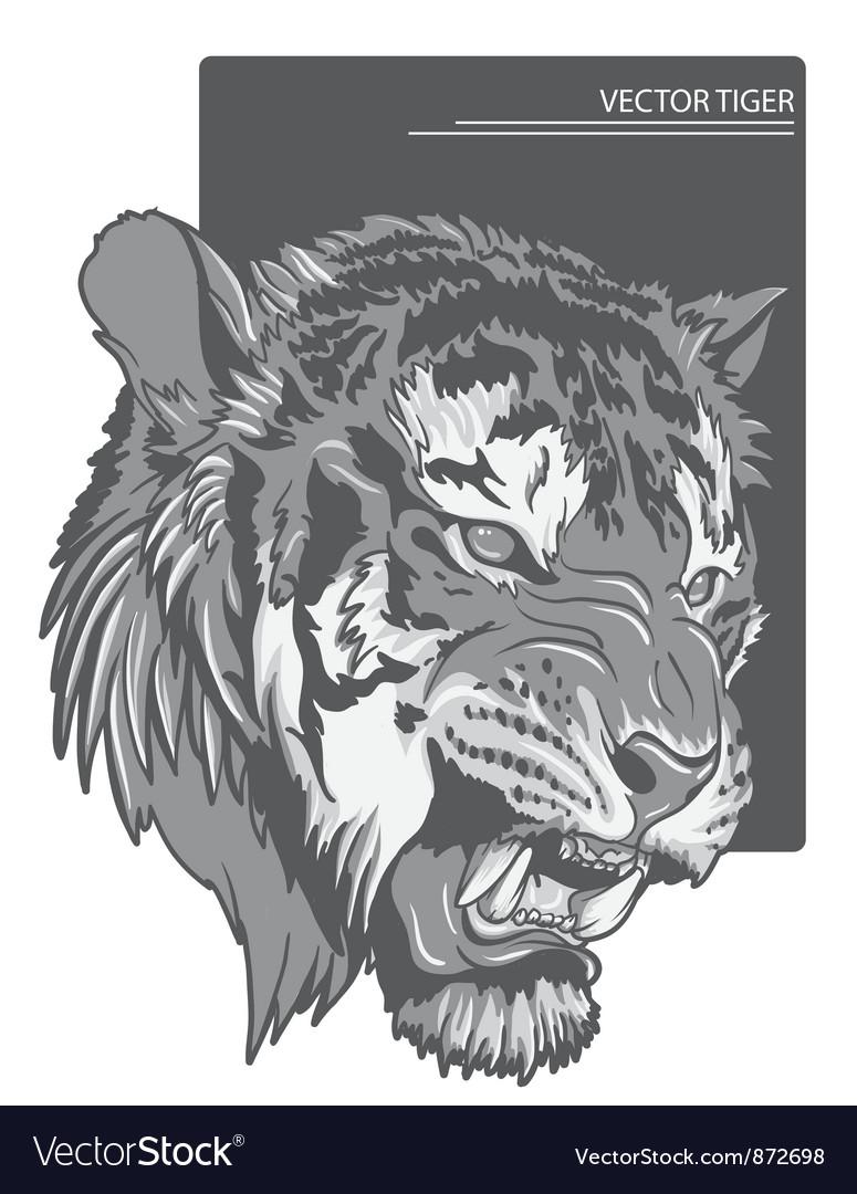 Raging tiger vector   Price: 1 Credit (USD $1)