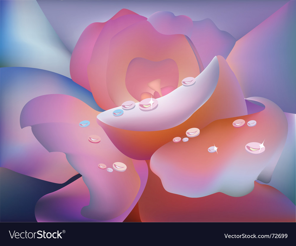 Rose petal vector | Price: 1 Credit (USD $1)
