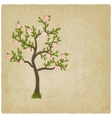 Pink flowers blossom tree vector