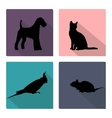 Icon set with silhouettes of pets vector