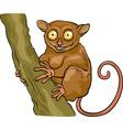 Tarsier animal cartoon vector