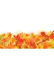 Autumn background with leaves back to school vector