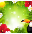 Green background with tropical elements and vector