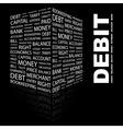 Debit vector