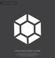 Diamond premium icon white on dark background vector