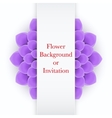 Greeting card or background with light purple vector