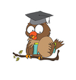 Owl teacher in format vector