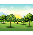 Tall trees vector
